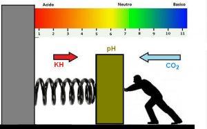 Disegno che spiega l'effetto di KH e CO2 su PH
