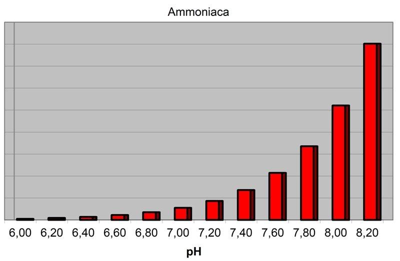 Andamento dell'ammoniaca in acquario