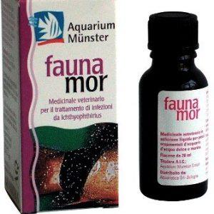 Faunamor