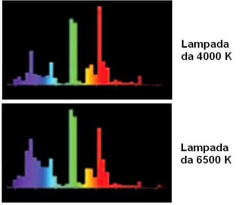 Spettro Lampade Fluorescenti