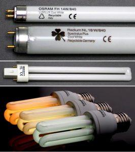 Lampade fluorescenti per acquario