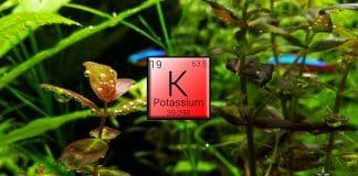 Potassio - Fertilizzanti per acquario
