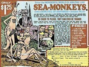 Gioco sea-monkeys