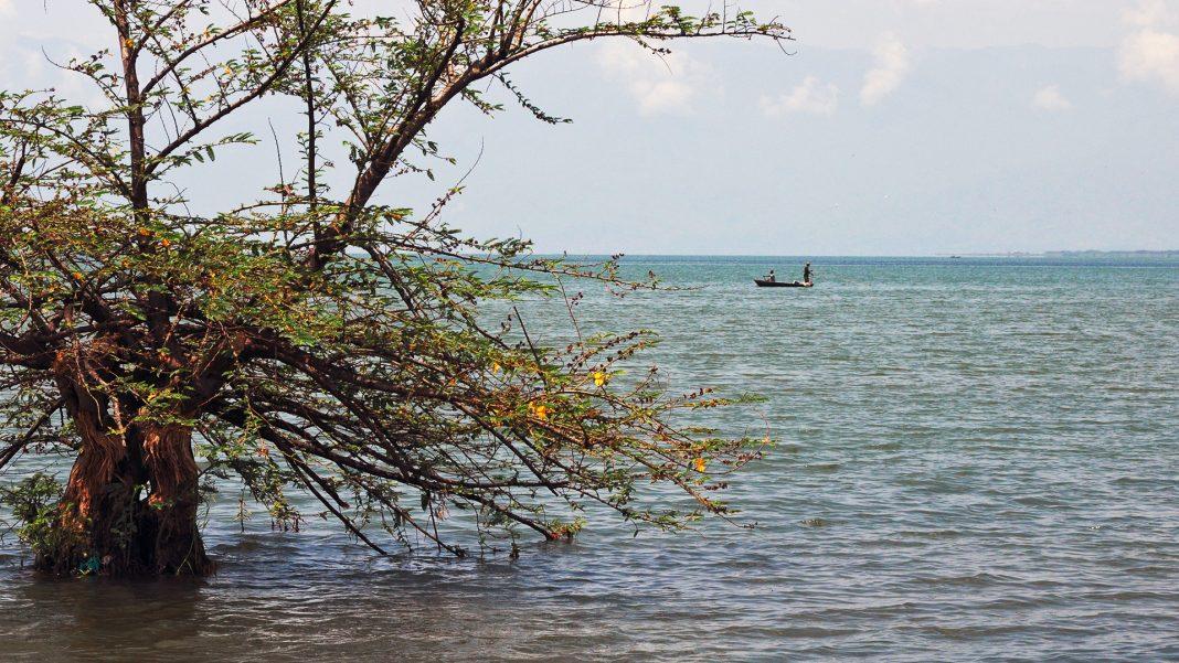 Il Lago Tanganica (o Tanganyika)