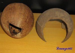 Tane acquario con noci di cocco