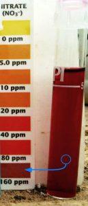 Nitrati alti in un test a reagente