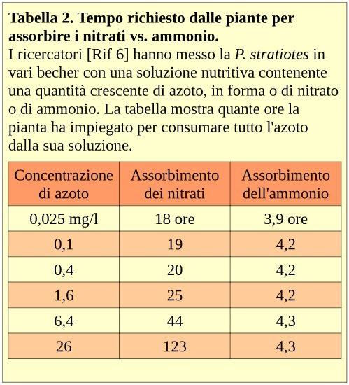 Tabella 2. Tempo richiesto dalle piante per assorbire i nitrati vs. ammonio
