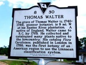Lapide di Thomas Walter