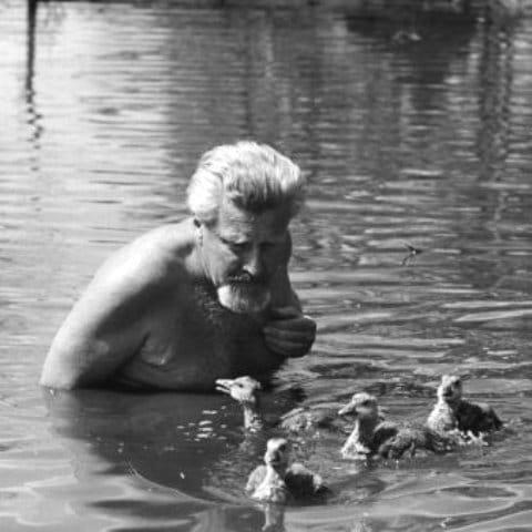 Konrad Lorenz nel laghetto