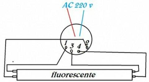 Colleganmenti lampada UV acquario