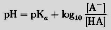 Equazione di Henderson Hasselbalch