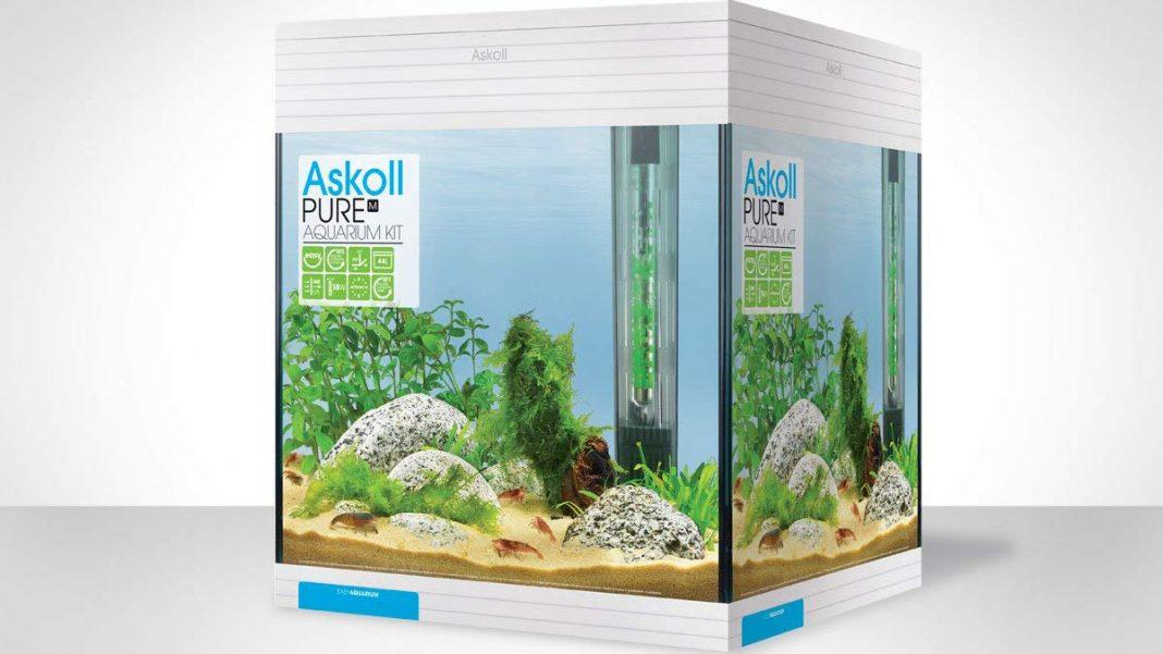 Acquario Askoll Pure