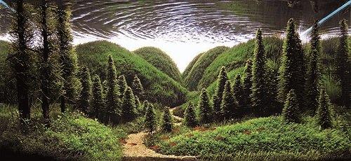 «Acquario Naturale» di Takashi Amano