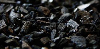 Il carbone attivo in acquario
