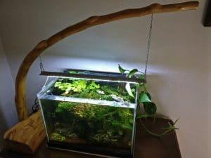 Plafoniera Acquario montata con LED