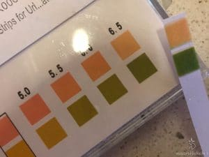 Striscette per pH