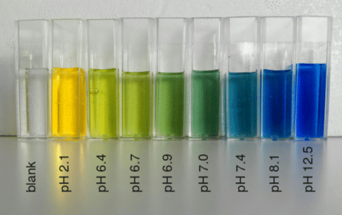 Variazioni di colore del bromotimolo al variare del pH