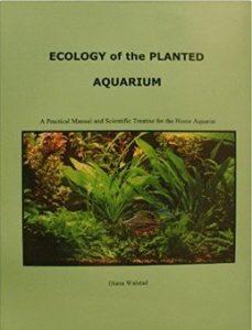 ecologia acquario piante aggiornamento