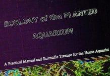 Un aggiornamento di Ecologia dell'acquario di piante