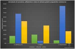 Grafico di assorbimento di Arsenico, Alluminio e Zinco