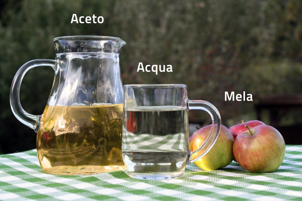 Ingredienti per la coltura di Anguillole dell'aceto