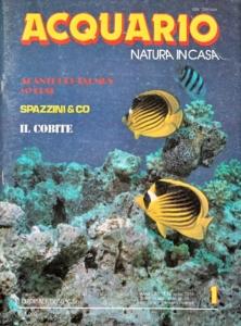 Copertina della rivista «Acquario» dedicata al marino, una delle riviste più lette dedicate all'acquariofilia
