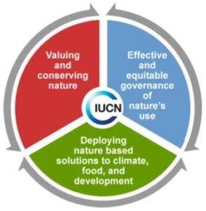 Lista rossa dell'IUCN