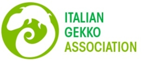 Italian Gekko Association