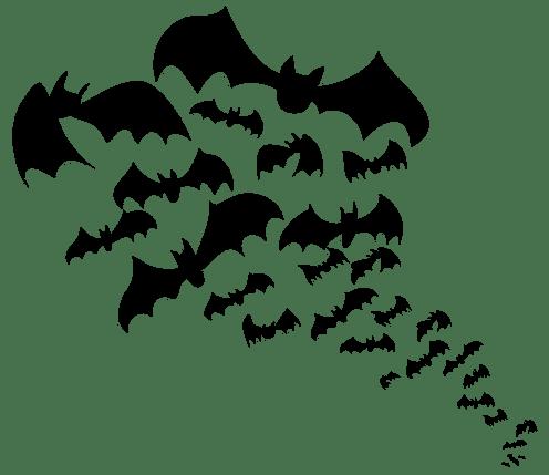Il buio favorisce la crescita delle colonie batteriche